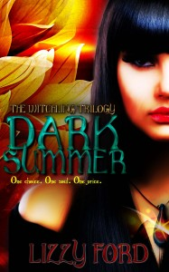 Dark Summer by Lizzy Ford