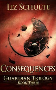 Consequences Book
