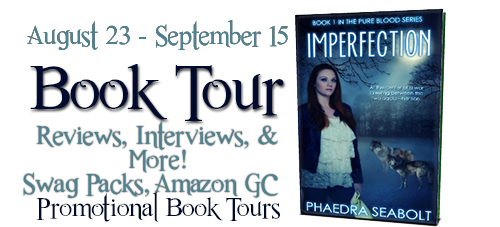 Imperfection by Phadera Seabolt Book Tour