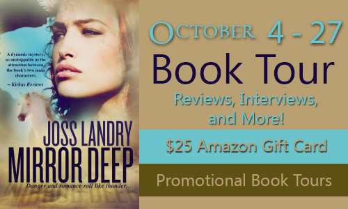 Mirror Deep Book Tour: $25 Amazon Gift Card Giveaway