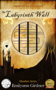 The-Labyrinth-Cover6v4---Amazon-2
